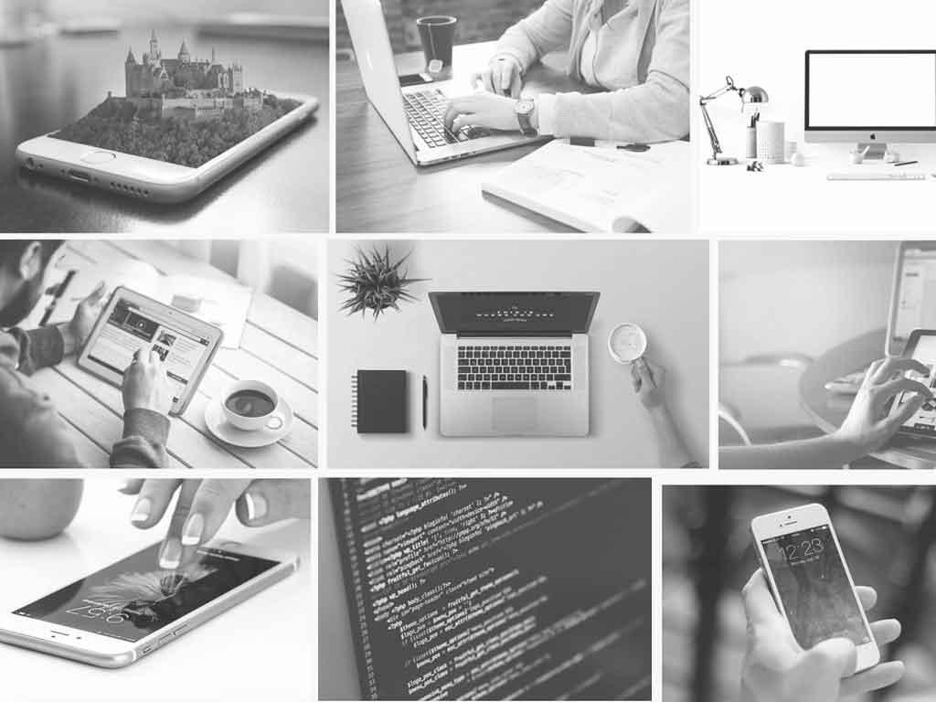Web Designer Service Reviews
